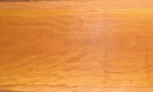 樹種:ビリンガ