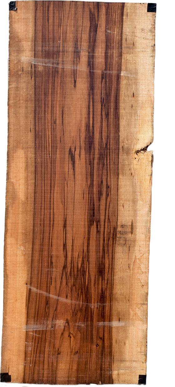 M's–無垢一枚板 取扱樹種紹介:マンゴー